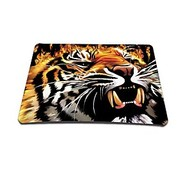 Tiger Gaming optische moused Pad (9  7 Zoll)